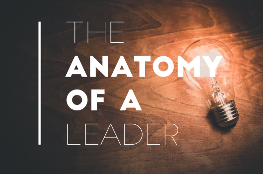 The Anatomy of Leadership